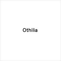 https://media.thecoolhour.com/wp-content/uploads/2020/10/20144956/othilia.jpg